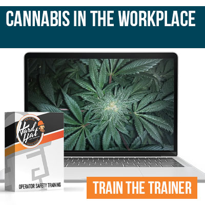 Cannabis in the Workplace Train the Trainer