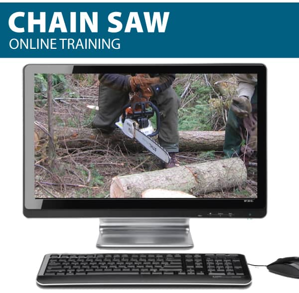 chainsaw canada online