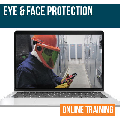 Eye and Face Protection Online Training