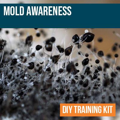 Mold Awareness DIY Training Kit