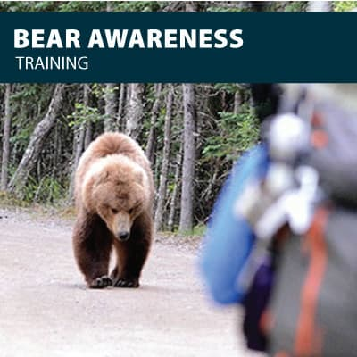 Bear awareness safety training certification