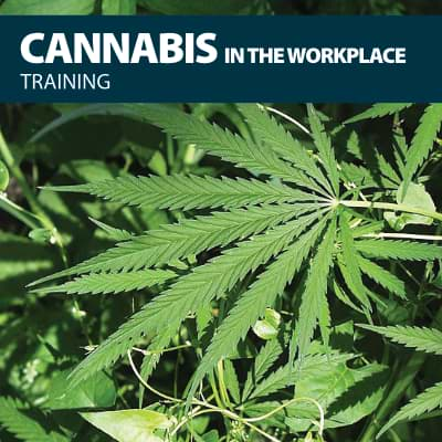 cannabis in the workplace training certification