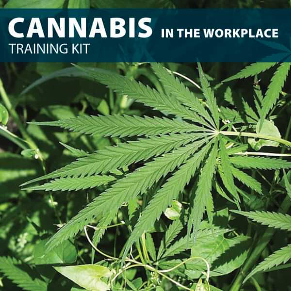 Marijuanna in the workplace training kit