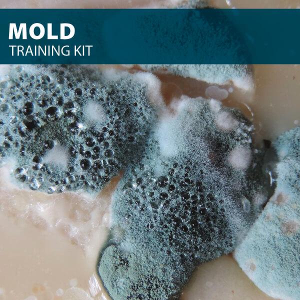 mold training kit